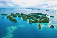 Palau Siren Liveaboard Details 11