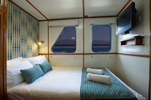 Spirit of Freedom Ocean View Standard Cabin