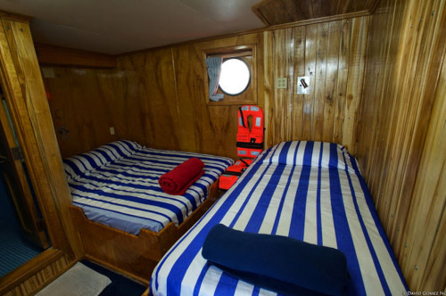 Bahamas Master Classic Twin Cabin