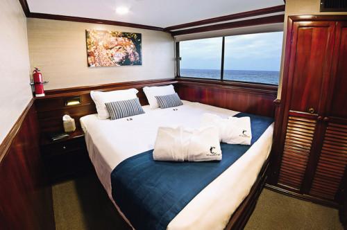 Galapagos Sky Master Cabin
