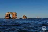 Galapagos Aggressor III Liveaboard Details 8