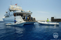 Red Sea Aggressor I Liveaboard Details 11