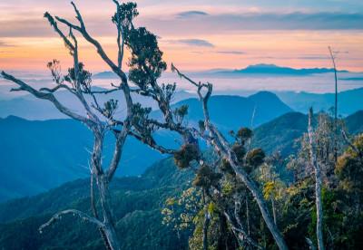 Papua New Guinea - Wild Landscapes