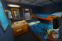 Rock Islands Aggressor Liveaboard Details 7