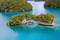 Palau Siren Liveaboard Details 9