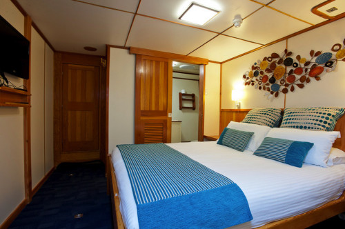 Spirit of Freedom Stateroom Cabin