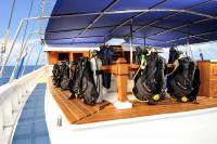 Palau Siren Liveaboard Details 5