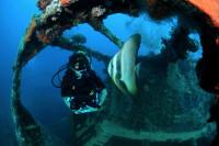 Palau Siren Liveaboard Details 15