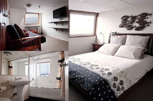 Nautilus Explorer Premium Suite Cabin