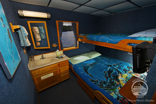 Rock Islands Aggressor Stateroom Cabin