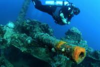 Palau Siren Liveaboard Details 19
