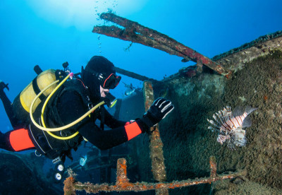 Liveaboard Diving the Red Sea, Egypt - Wreck Diver